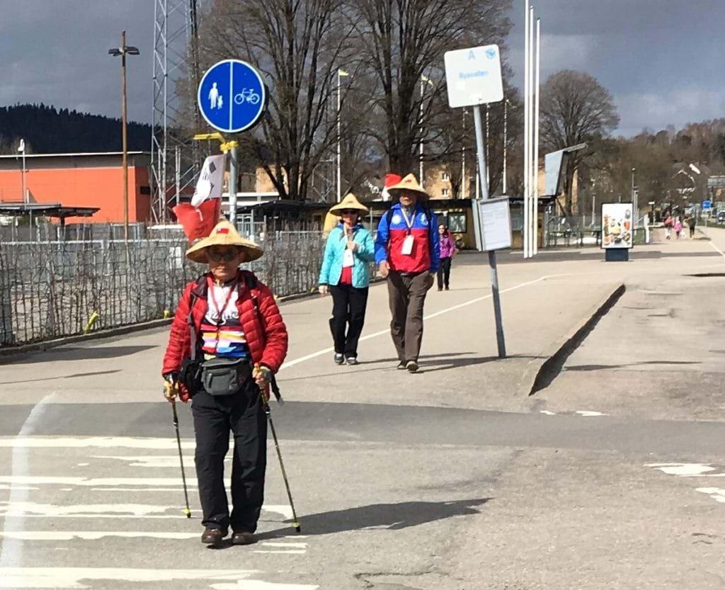 Viktrapport vecka 6 - Linnémarschen